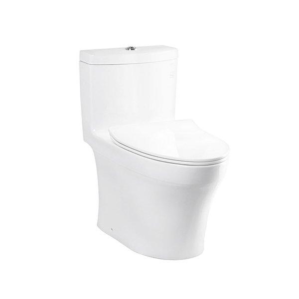 C889DESI - One Piece Toilet